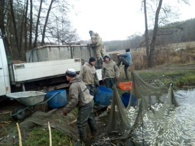 Кременчуцьке водосховище збагатилось близько 18 тис.екз. риби